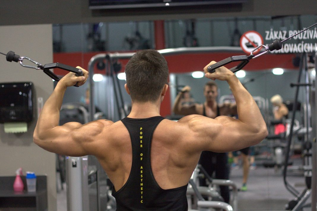 The Reinforcement Back Gym Fitness Exercise Man